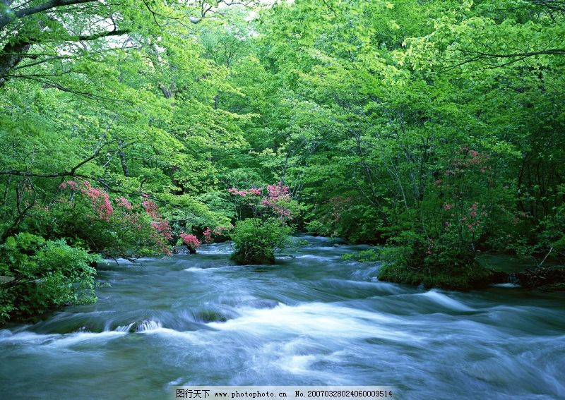 溪流水源0286 自然风景
